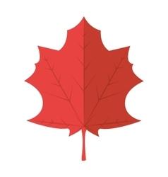 leaf autumn dry plant sheet vector image