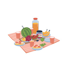 Picnic food on blanket watermelon and sandwiches vector