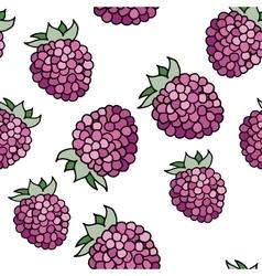 Raspberries pattern vector image