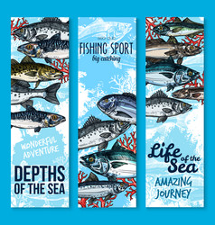 Sea fishing and seafood banners vector