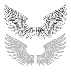 straightened wings in linear and stamp versions vector image