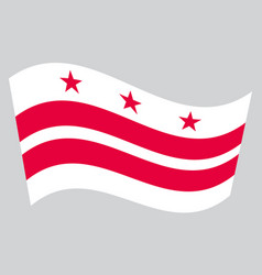 flag of washington dc waving on gray background vector image vector image