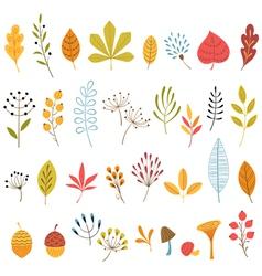 Autumn floral design elements vector