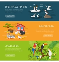 Bird Horizontal Banners Set vector image