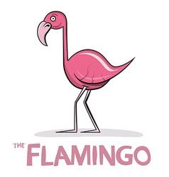 Flamingo Cartoon Pink Bird vector image