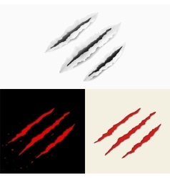 Set of claw scratches vector