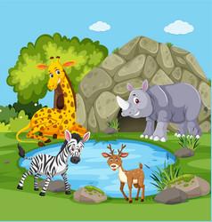 Animals around a pond vector