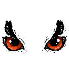 Drawing of the eyes owl on white background vector