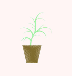 Flat shading style icon flower in pot aloe vector