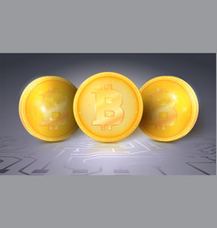 gold coins of the bitcoin the symbol of the vector image
