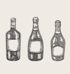 hand drawn wine bottles in sketch style vector image