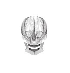 line craft skull design template vector image