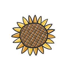 sunflower isolated in white sketch for your vector image