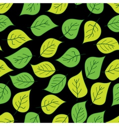 abstract background of green leaf vector image vector image