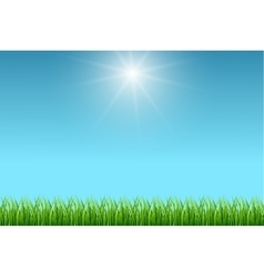 Clean blue sky and green grass background vector image