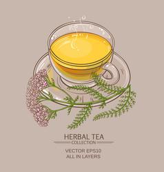 cup of yarrow tea vector image vector image
