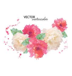 watercolor peony flower vector image