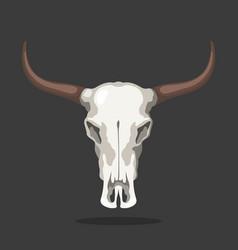 cow skull icon isolated bull bone animal head vector image