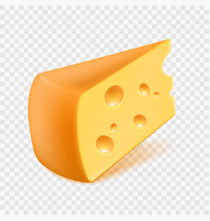 realistic cheese isolated on a vector image