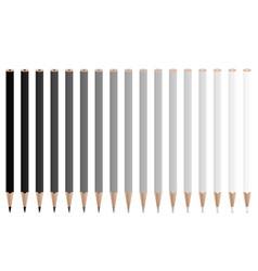 grey pencils vector image
