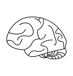 human brain idea creativity outline vector image