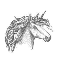 mythic unicorn horse sketch vector image vector image
