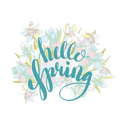 beautiful lettering hello spring hand drawn vector image