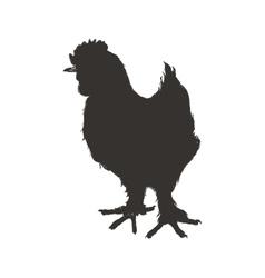 Chicken sketch silhouette animal farm icon vector