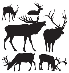 deer silhouettes 2 vector image