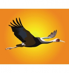 heron flying vector image