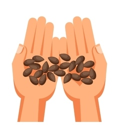Human hands holding handful seeds vector