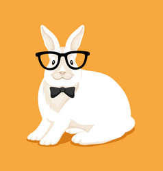 rabbit with glasses vector image