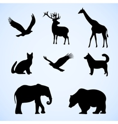 set of with wild and pet vector image vector image