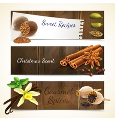 Spices banners horizontal vector image vector image