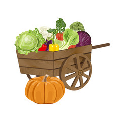 wooden cart with vegetables vector image