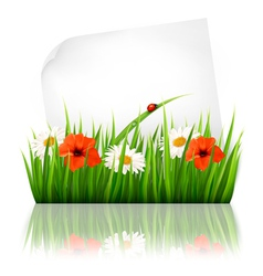 Nature background with grass and a sheet of paper vector