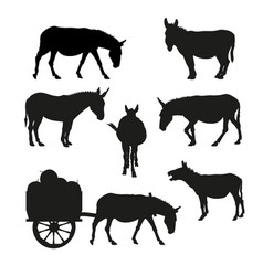 Set silhouettes a donkey in various vector