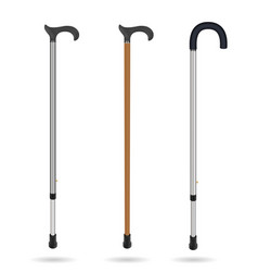 wooden cane and metal telescopic canes with vector image