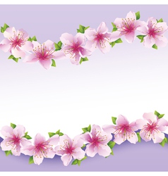 Stylish floral background greeting card with vector image vector image