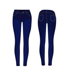 Blue jeans pants vector