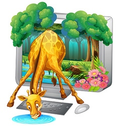Computer screen with giraffe drinking water vector image