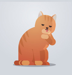 cute cat icon fluffy adorable cartoon animal vector image