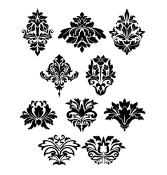 Damask floral elements with curly flower details vector image