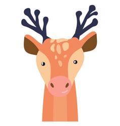 Deer cute animal baface vector