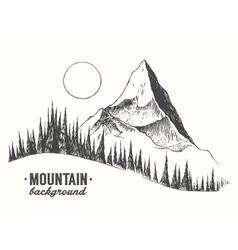 Fir forest mountain drawn vector
