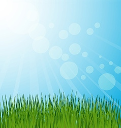 Grass background vector image