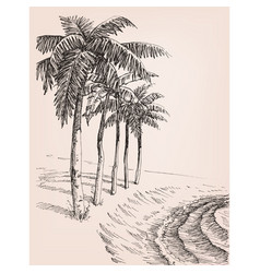 Palm trees on the beach drawing vector