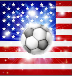 usa soccer flag vector image