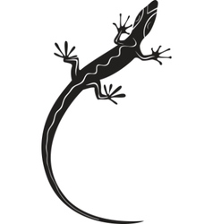 black decorative lizard silhouette tattoo vector image