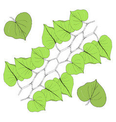 green leaves line on white vector image vector image